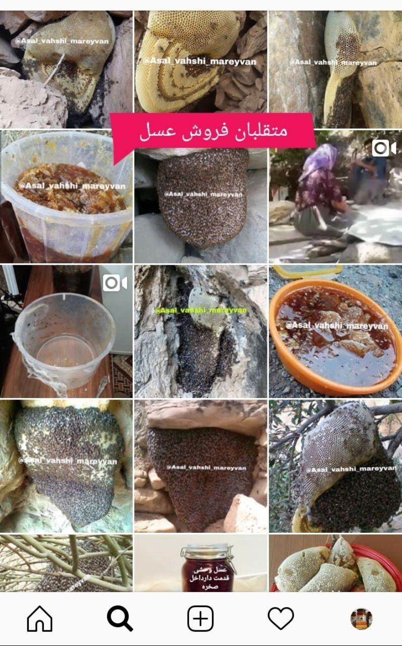 سایت عسل تقلبی