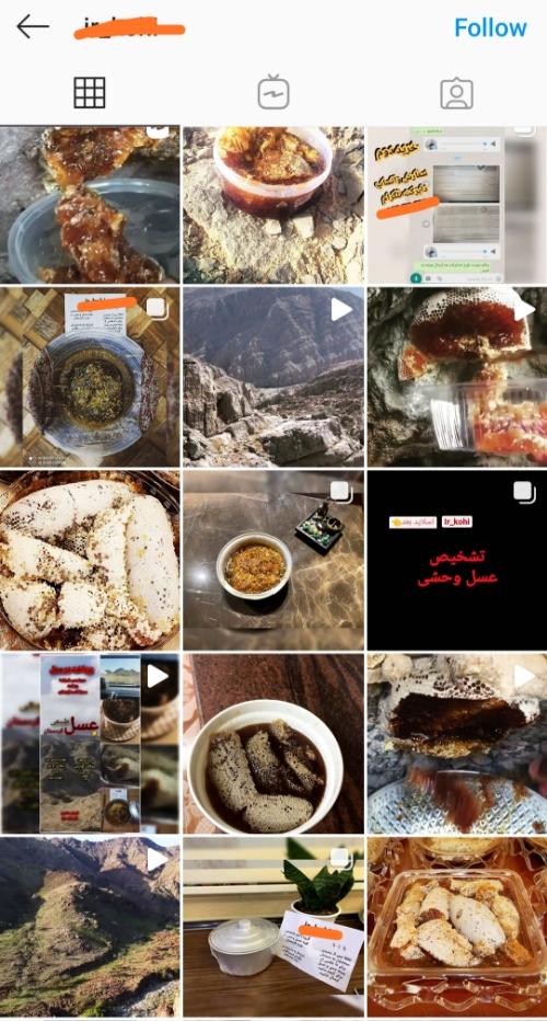 عسل وحشی کردستان