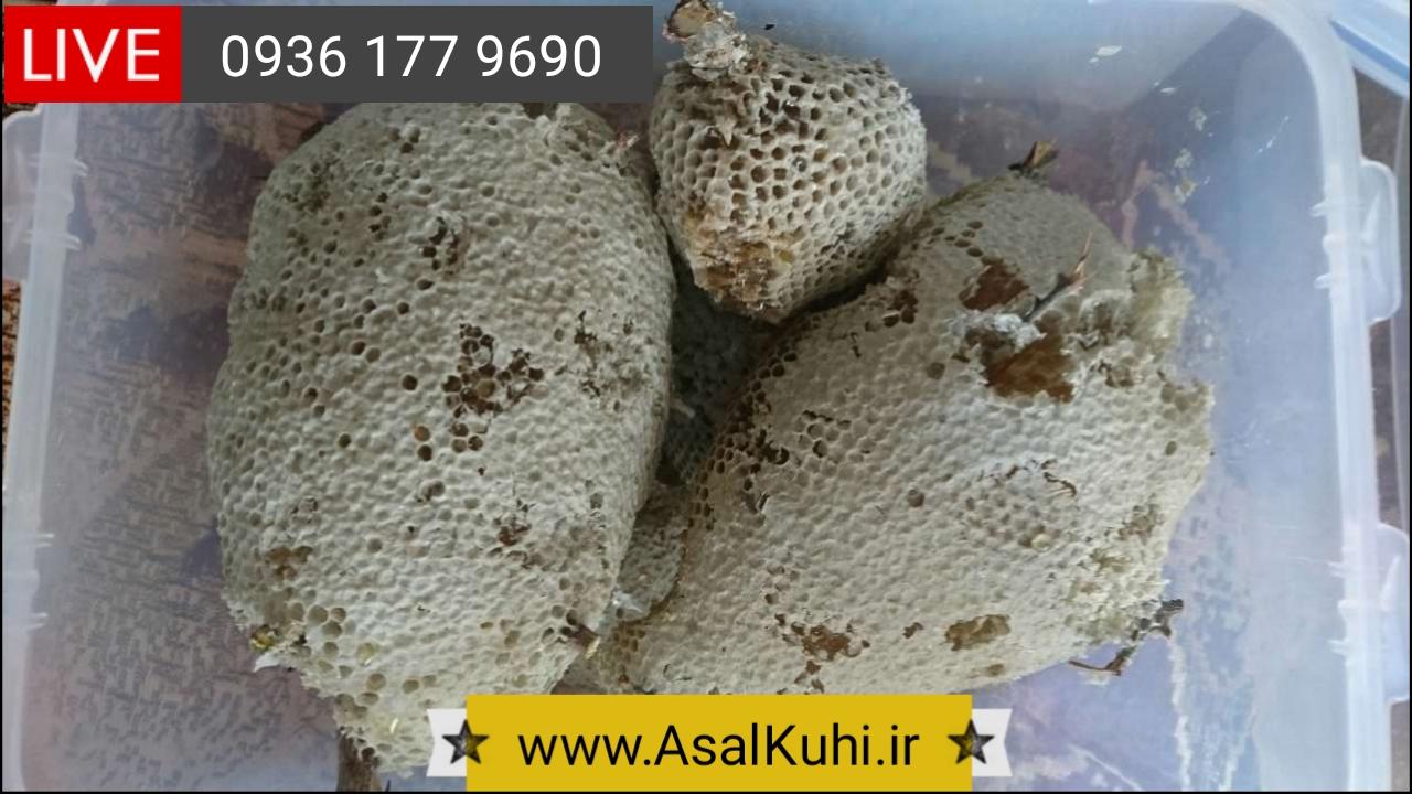 خرید عسل کوهی طبیعی در تهران
